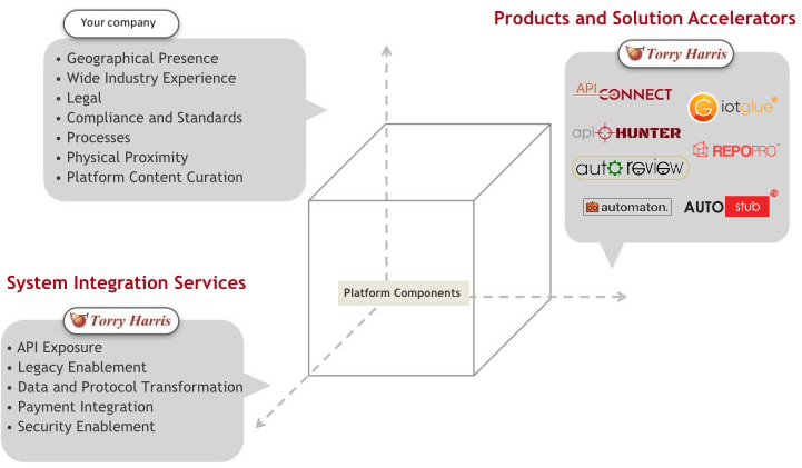 Services and technology products in the API space